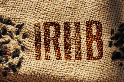 IRHB-Logo